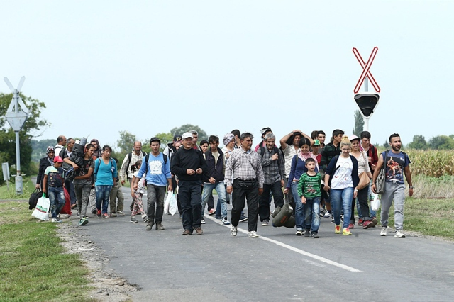 Migrants in Hungary near the Serbian border